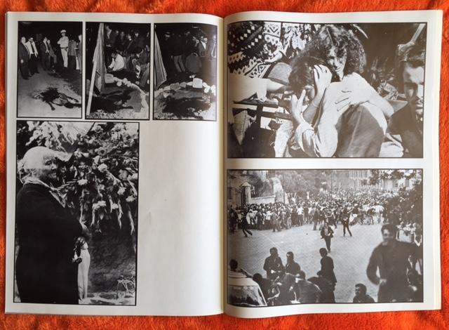 damico-1978-eil77-11