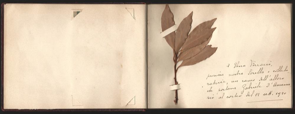 ferrario-1920-album-p-13