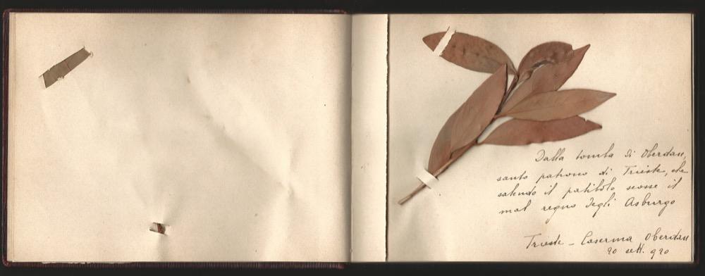 ferrario-1920-album-p-17